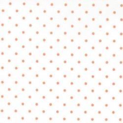 Basics Dots N.R.