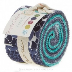 Junior Jelly Roll Simply Colorful I